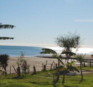 Verhuizen van of naar Fuengirola