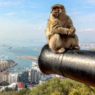 Mudanza en Gibraltar