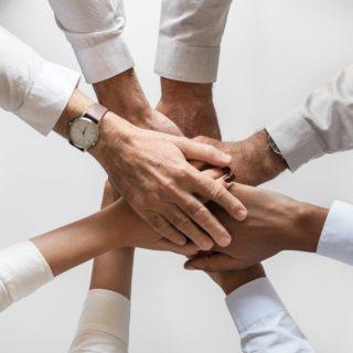 Principales Partners y Red de Colaboradores de Mudanzas