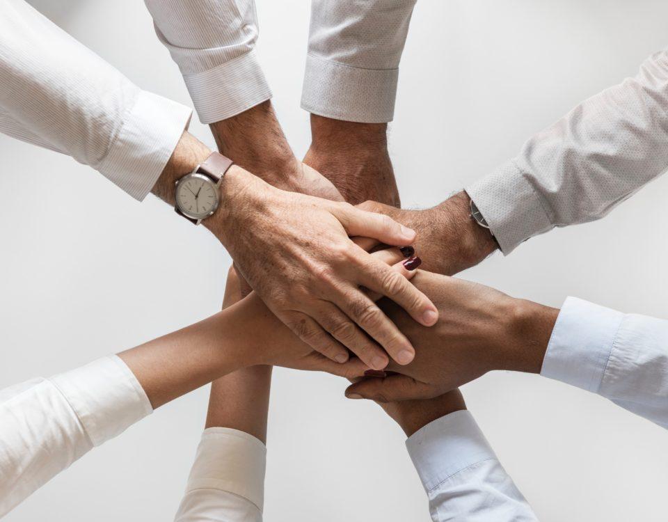 Mudanzas Hakotrans Partners y colaboradores de mudanzas