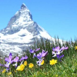 Mudanza internacional en Suiza